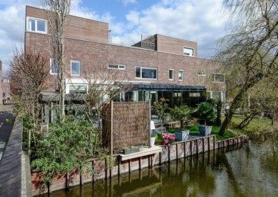 Zomereik, Den Haag