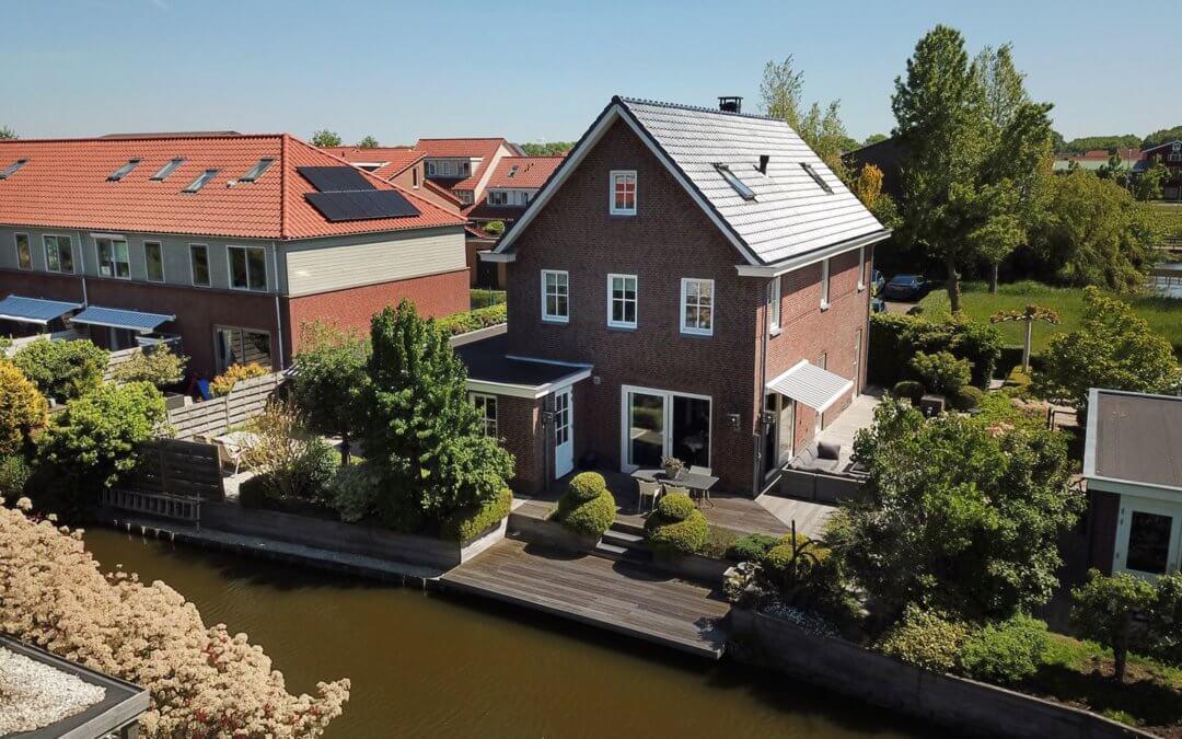 Pluimzegge, Den Haag