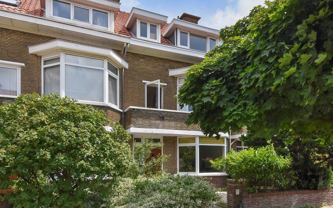Petuniaplein, Den Haag